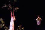 MULTICIDADE © foto Renato Mangolin -Espetáculo O Tremor da Rosa